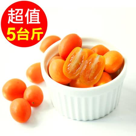 【人字山】美濃橙蜜香小番茄 1箱(5台斤/3公斤)