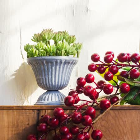 【Meric Garden】西方古典多肉植物微景觀鐵藝聖杯/多肉花器(聖杯S)