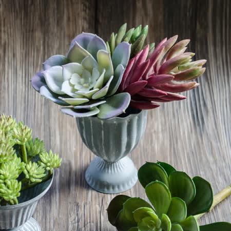 【Meric Garden】西方古典多肉植物微景觀鐵藝聖杯/多肉花器(聖杯M)