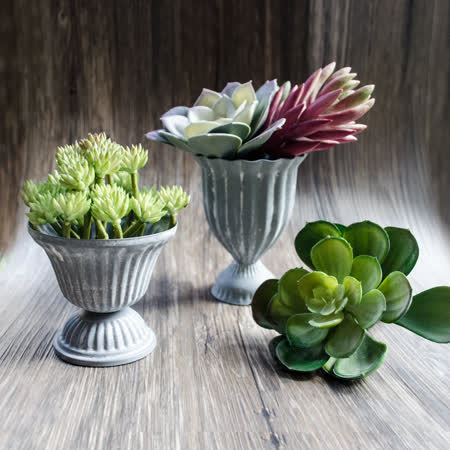 【Meric Garden】西方古典多肉植物微景觀鐵藝聖杯/多肉花器(聖杯S/M二入組)