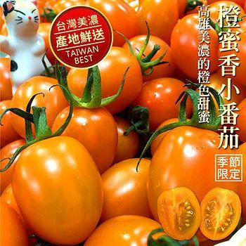 吃貨達人 美濃超人氣橙蜜香小番茄-1箱 (3台斤/箱)