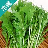 有機轉型期京都水菜(250g±5%/包)