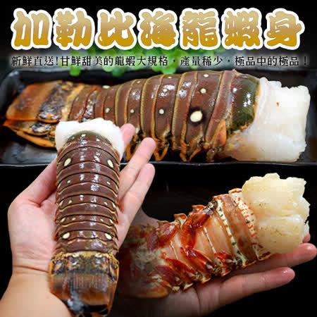 【築地一番鮮】蔚藍海-加勒比海龍蝦身3尾(220g/尾)免運組