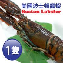 【築地一番鮮】加拿大直送-頂級波士頓龍蝦1隻(約750g/隻)免運組