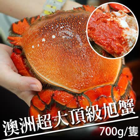 【築地一番鮮】特大澳洲旭蟹2隻(約700g/隻)免運組