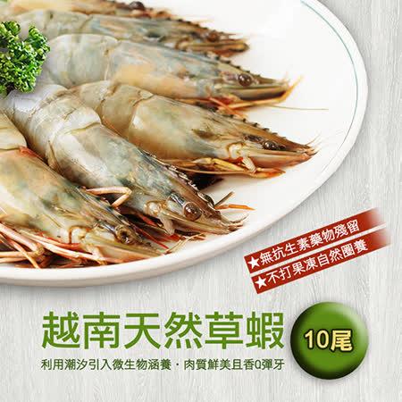【築地一番鮮】鮮美草蝦3盒(10尾裝/盒/約380g)免運組
