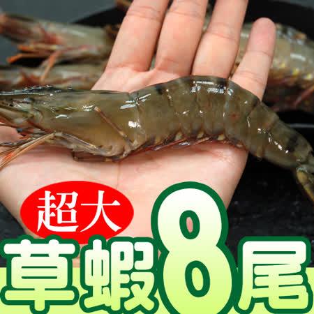 【築地一番鮮】鮮美大草蝦8尾裝(淨重約380g/盒)-任選
