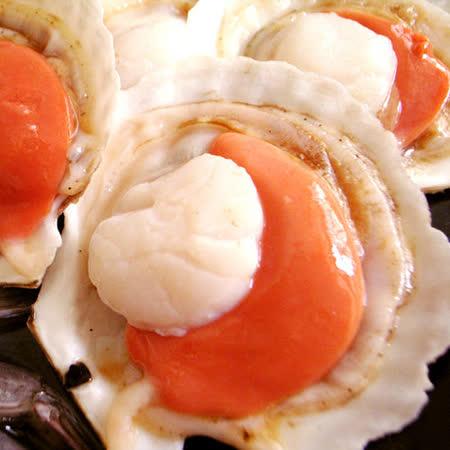 【築地一番鮮】鮮美大連帶殼扇貝(500g/包/5-8粒)-任選