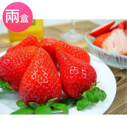 【鄒頌】台灣大湖網室草莓【約30-36顆/盒】(兩盒入)