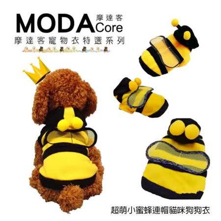 【摩達客寵物衣】<br>超萌小蜜蜂造型保暖連帽貓咪狗狗衣服
