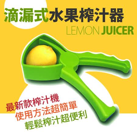 【HL 生活家】滴漏式水果榨汁器(HL-096)