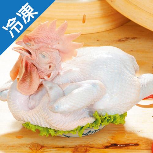 國產土雞1.3~1.6KG隻