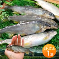 【築地一番鮮】宜蘭帶卵小香魚1盒(14尾裝/1kg/盒)免運組