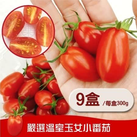 【果之蔬】台东释迦400~450克/颗*3颗&温室LV玉女蕃茄600克/盒*2(