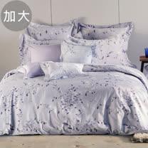Tonia Nicole東妮寢飾 多莉絲環保印染精梳棉兩用被床包組(加大)