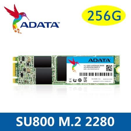 威剛 SU800 256G M.2(2280) 固態硬碟/讀取560MB/s 寫入520MB/s/三年保固