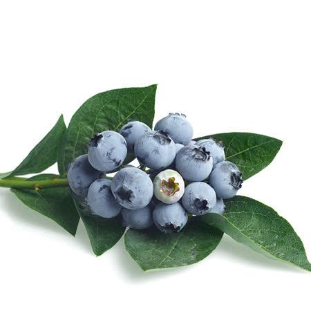 [黑貓嚴選]美國 藍莓(1020g/6盒)