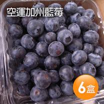 【築地一番鮮】空運加州藍莓6盒(125g/盒)免運組