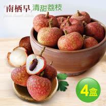 【築地一番鮮】清甜南栖早荔枝4盒(5斤/盒)-預購