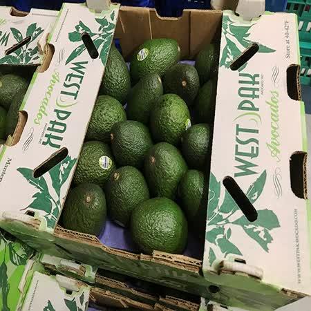 【黑貓嚴選】美國加州酪梨(1.4kg±50g/袋,約6入)含運