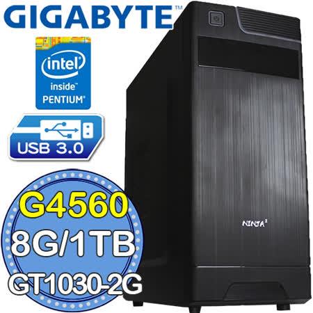 技嘉H110平台【迅雷騎士】Intel第七代G系列雙核 GT1030-2G獨顯 1TB效能電腦