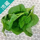 有機轉型期皇宮菜(250g±5%/包)