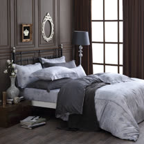 OLIVIA 《 Alexander 銀灰 》 雙人加大床包冬夏兩用被套四件組 繡線枕 棉天絲系列