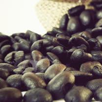 【Gustare caffe】精選東帝汶咖啡豆(半磅)(任選)