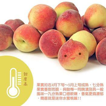 鮮果日誌台灣甜桃/甜蜜桃3台斤禮盒