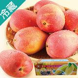 外銷日本等級愛文芒果1箱(5kg±5%/箱)