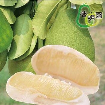 普明園 AA級台南麻豆40年老欉文旦 (5台斤/箱,約5-7顆)