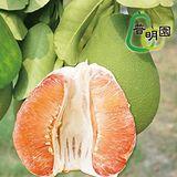 普明園 嚴選台南麻豆40年老欉紅柚 (5台斤/約3-6顆/箱,共二箱)