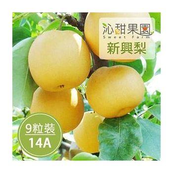 沁甜果園SSN苗栗卓蘭新興梨(14A,9粒裝)