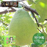 沁甜果園SSN 台南麻豆頂級文旦(一般禮盒) (約10-14粒/10台斤)