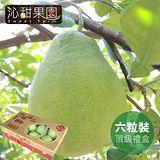 沁甜果園SSN 台南麻豆頂級文旦6粒裝 (頂級禮盒/5台斤)