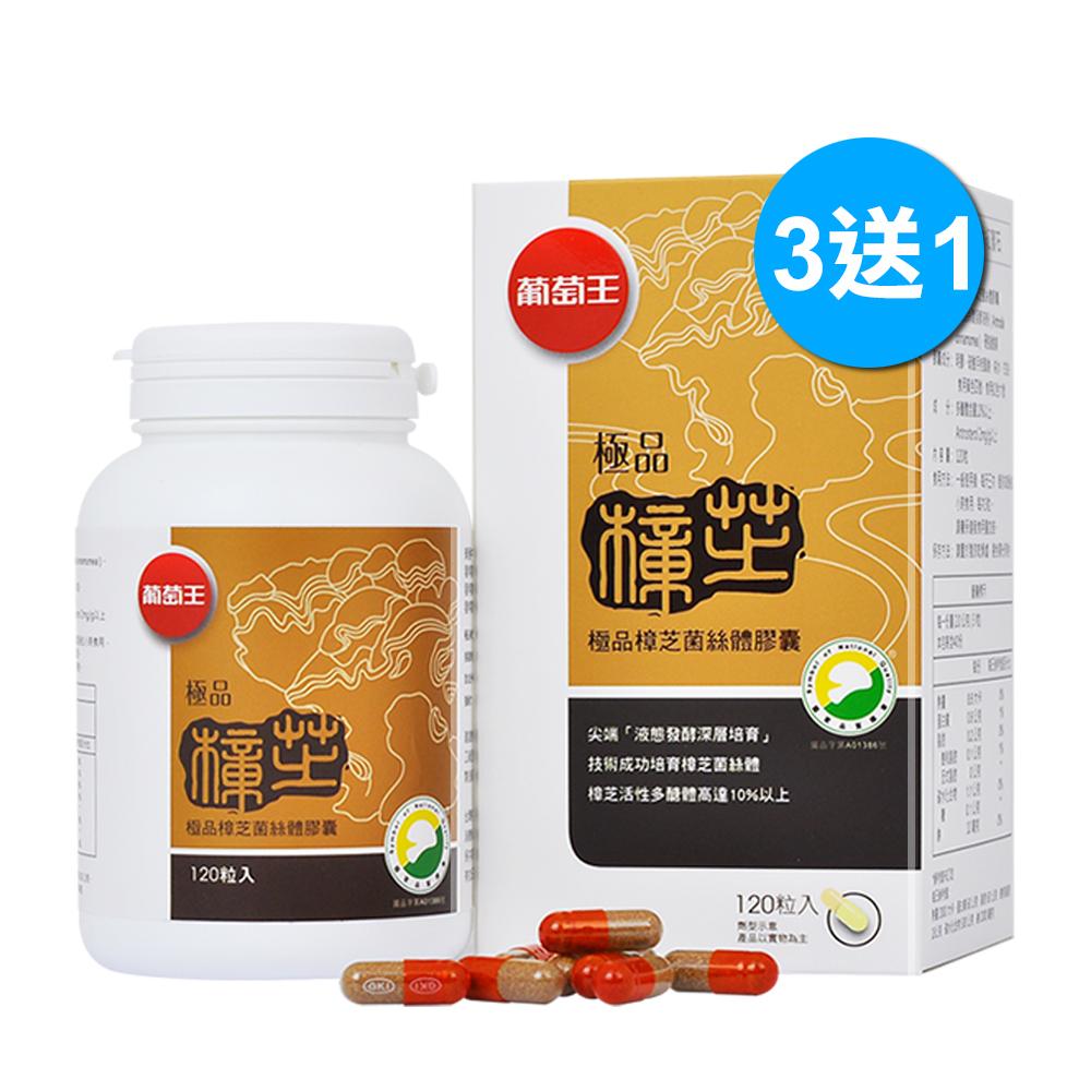 買3送1 限量優惠釋出【葡萄王生技】極品樟芝王120粒  認證靈芝王 健康食品