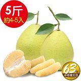 ㊣ 台南林家 63年在地老欉麻豆文旦 5台斤/箱 4-5顆