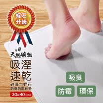 泰厲害 硅藻土蛭石防臭防潮地墊 / 吸水地墊 (30X40cm)