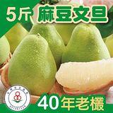 家購網嚴選 台南麻豆文旦40年老欉 5斤裝(5~6顆)x4