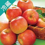 美國富士蘋果 125