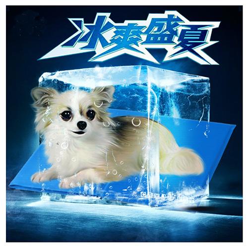 寵物愛家-寵物涼爽冰墊春夏專用-M(Z048)