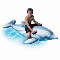 INTEX 小海豚座騎