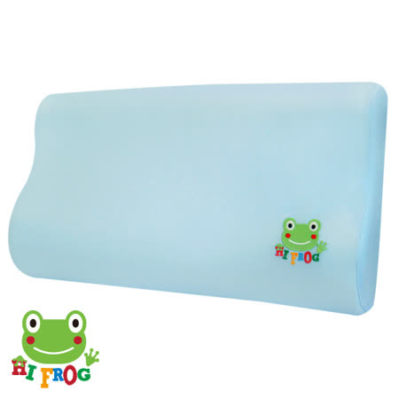 【Hifrog】台灣製造高密度記憶枕-3M防蹣抗菌枕套