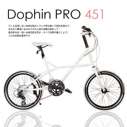~AiBIKE~SHIMANO 20吋24速 Dolphin PRO 小徑車 雪白限定版