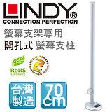 LINDY 林帝 台灣製 中鋼鋼材 螢幕支架專用 開孔式支桿 70cm(40963)
