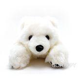 【懶懶北極熊】