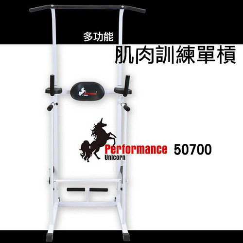 Performance 台灣精品 X-BIKE 50700 多功能 肌肉站 前 新光 三越訓練單槓/仰臥起坐伏地挺身架/鞍馬運動