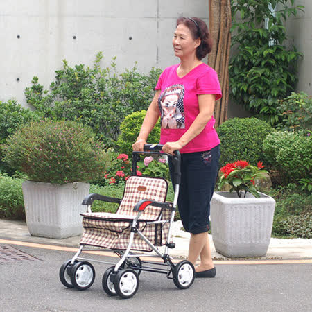 銀髮族 購物車/散步車/步行輔助車/台灣製造《F238》