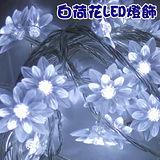 《特惠組合~兩入》可延長式 白荷花LED燈串 (5米/40燈)【聖誕燈飾】