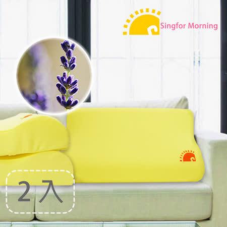 【幸福晨光】薰香釋壓感溫記憶枕(2入)